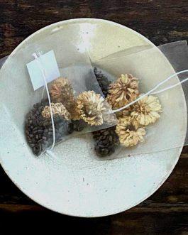 菊花決明子茶包